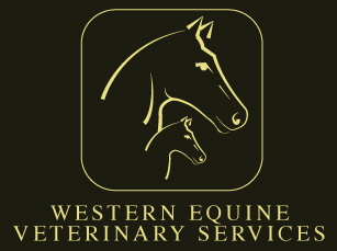 Western Equine Veterniary Services Logo